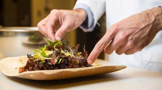 Visual of Seaweed That Tastes Like Bacon