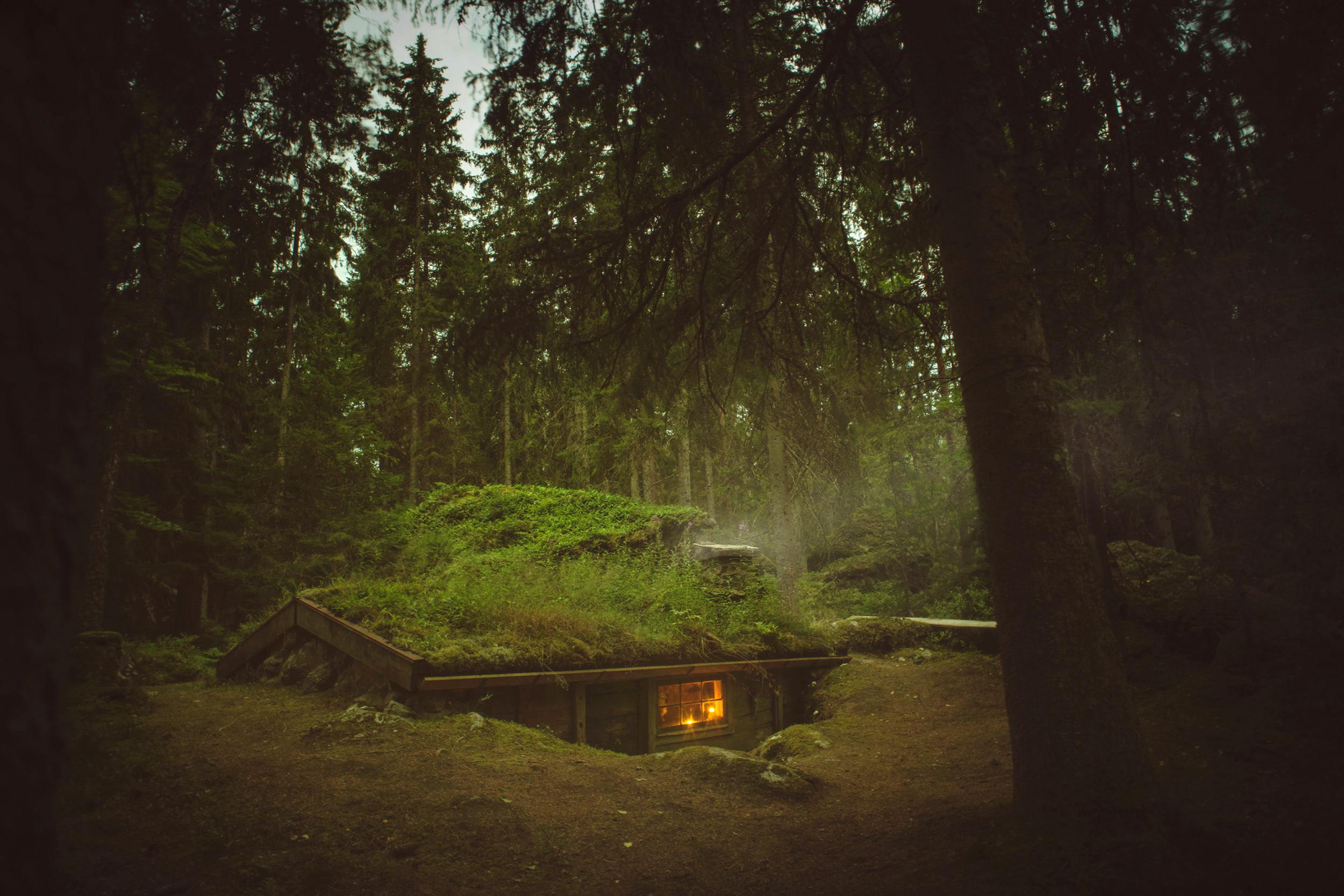 Visual of Swedish Underground Cabins
