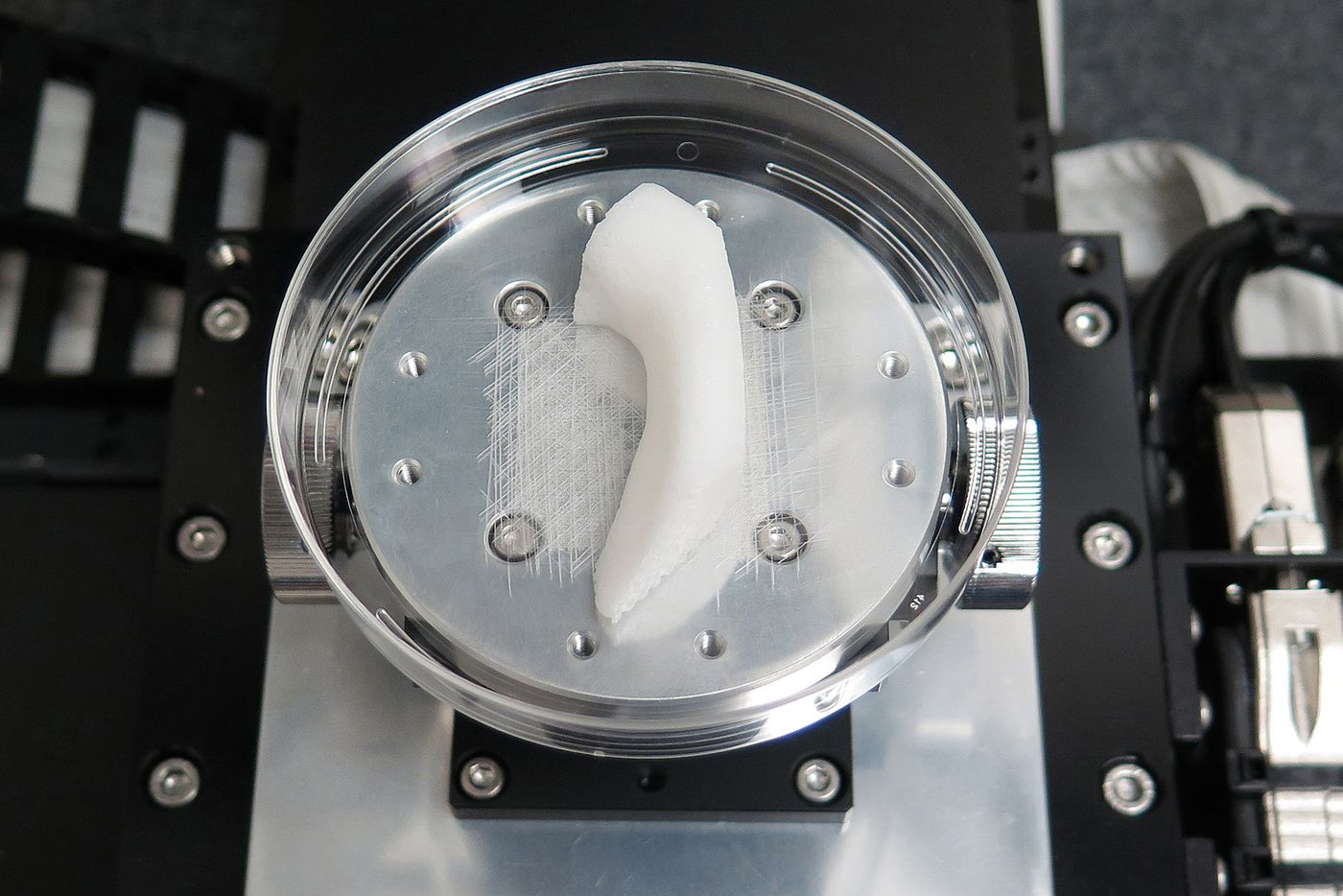 Visual of Bio-Printer Creates Living Body Parts