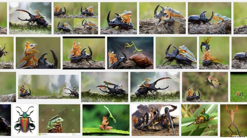 Visual of Animal Fauxtography