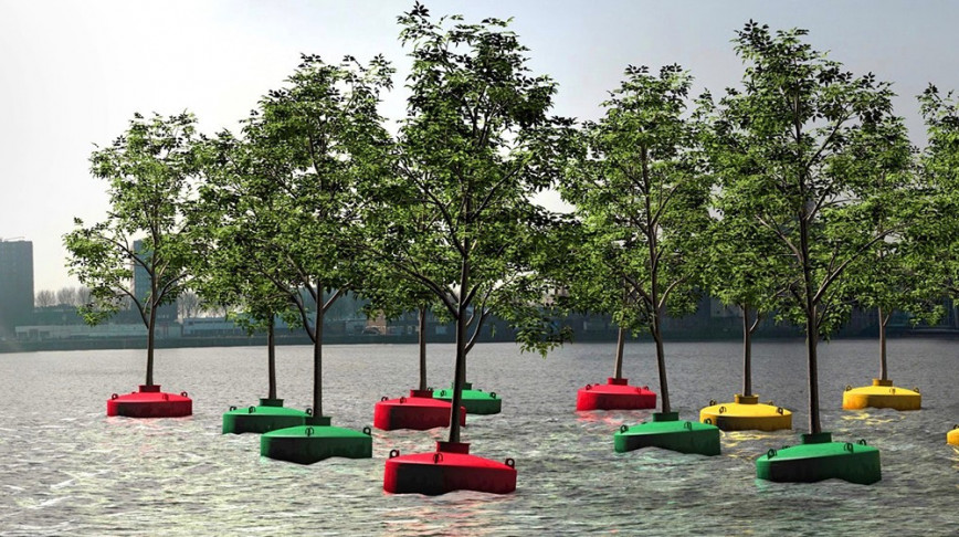 Visual of Bobbing Trees in Rotterdam