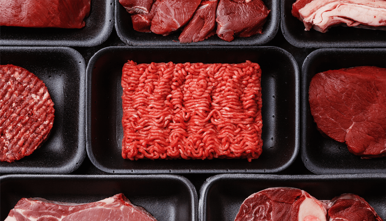 Visual of Bringing In Vitro Meat to the Market