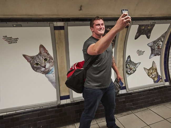 Visual of Cats Take Over London Underground