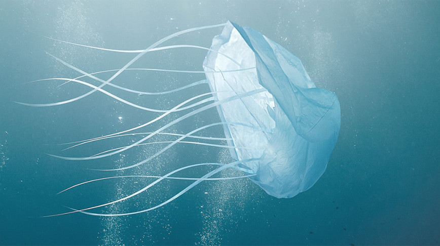 Visual of The Danger of a Plastic Sea