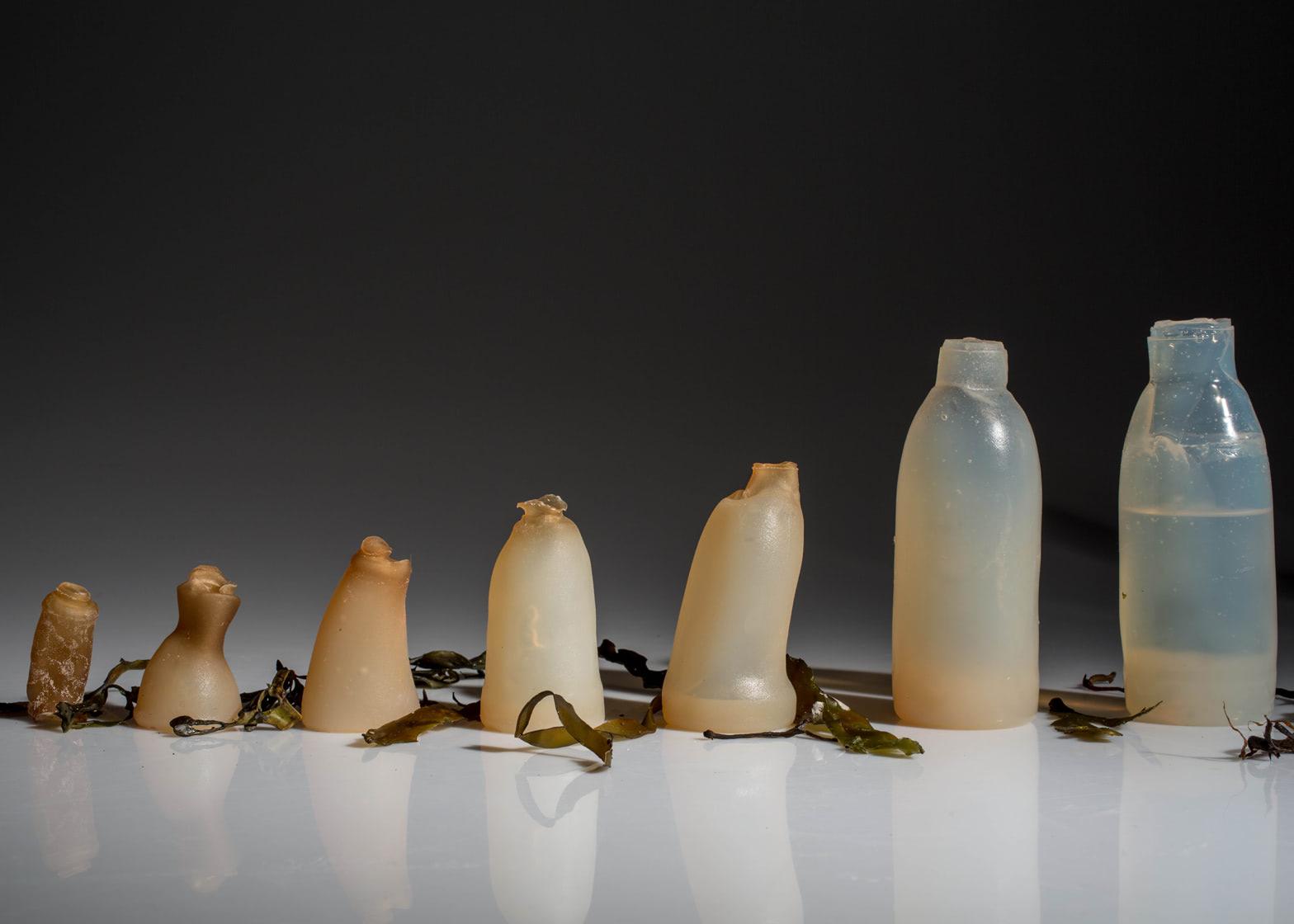 Visual of Designer Creates Water Bottles from Algae