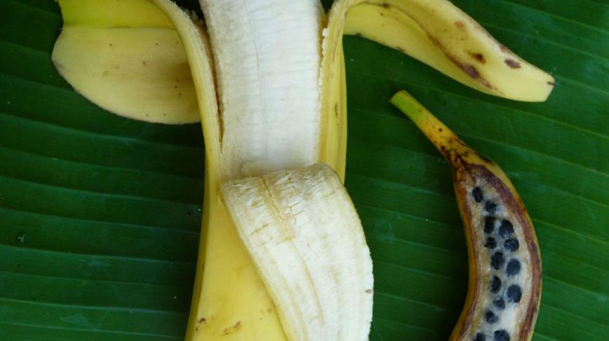 Visual of Banana by Design