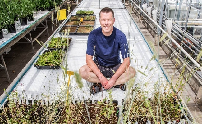 Visual of Edible Crops Grown in Martian Soil