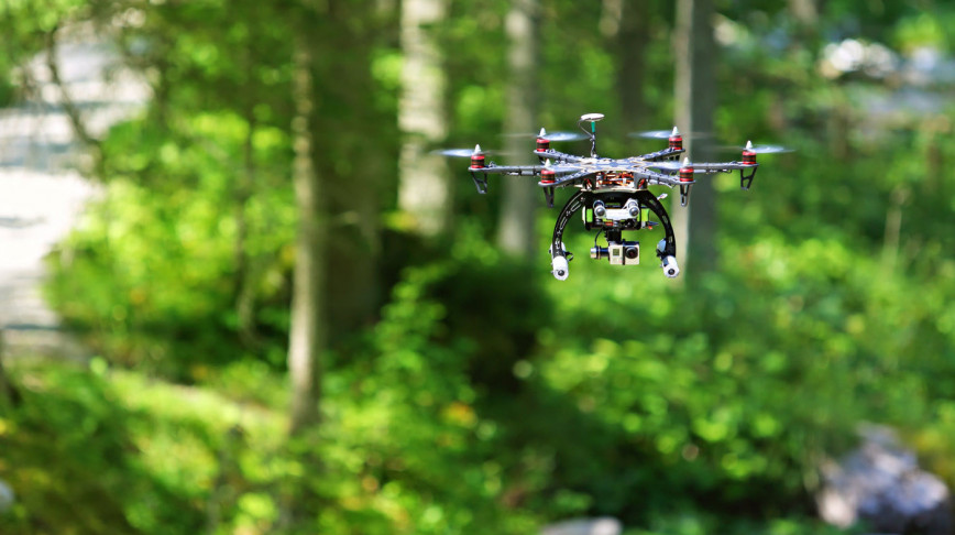 Visual of Lost in the Forest? The Drones Will Find You