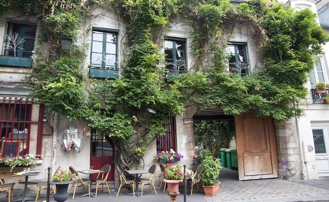 Visual of Guerilla Gardening in Paris