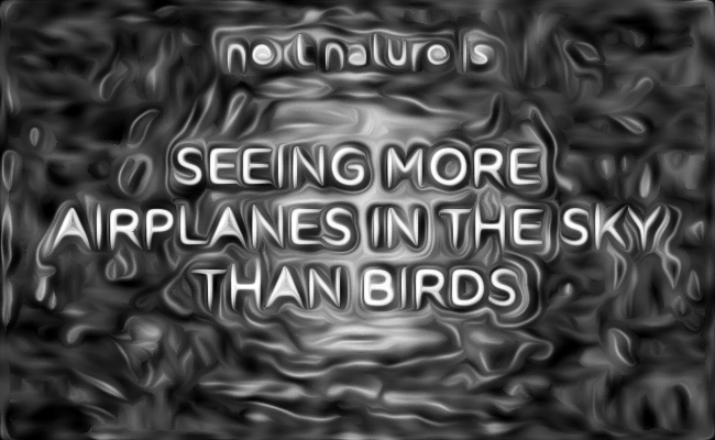 Visual of What Is Next Nature? #10