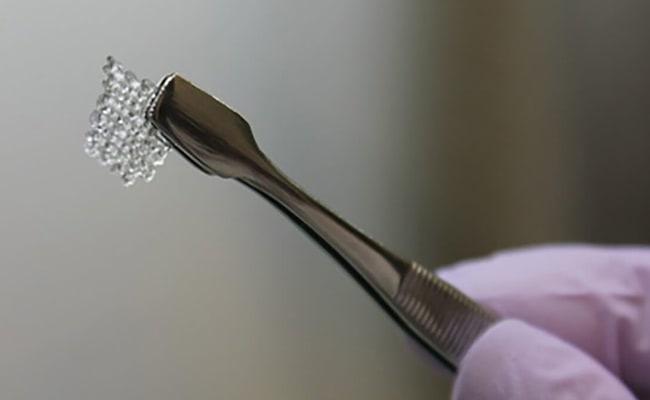 Visual of 3D Printed Ovaries