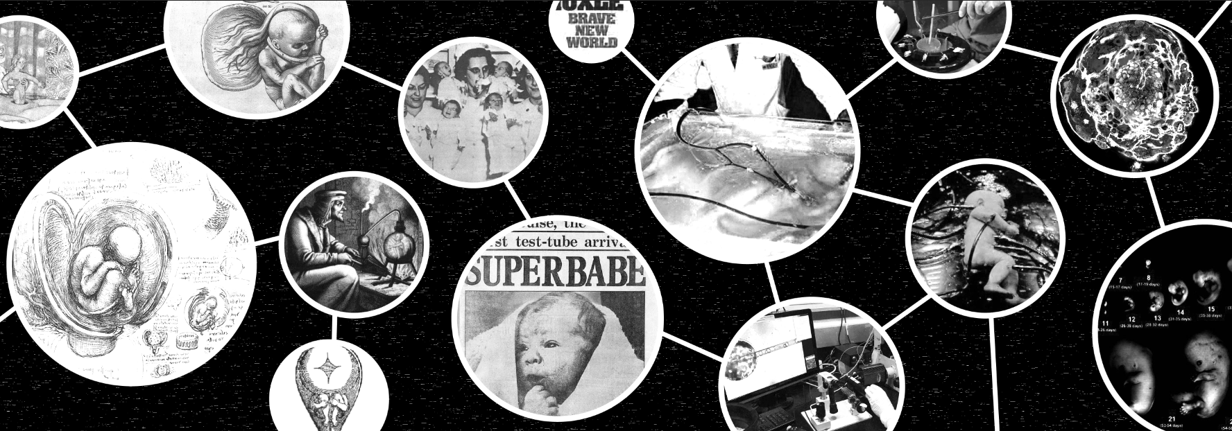 Visual of Artificial Womb: the Timeline