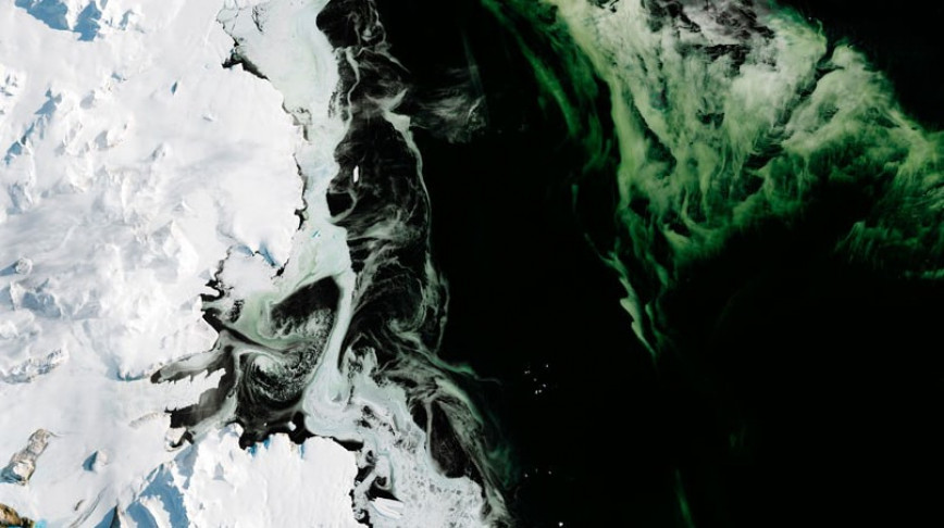 Visual of Antarctica Is Turning Green