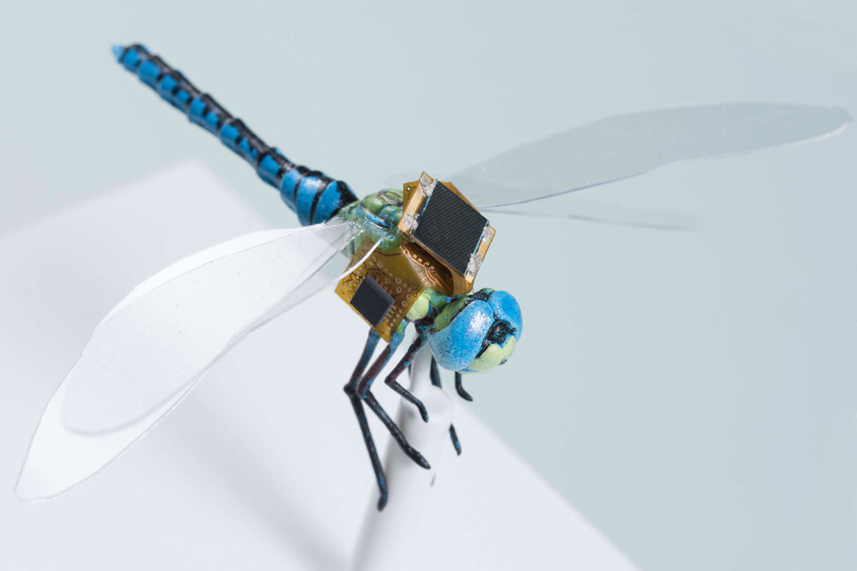 Visual of Cyborg Dragonfly for Special Service