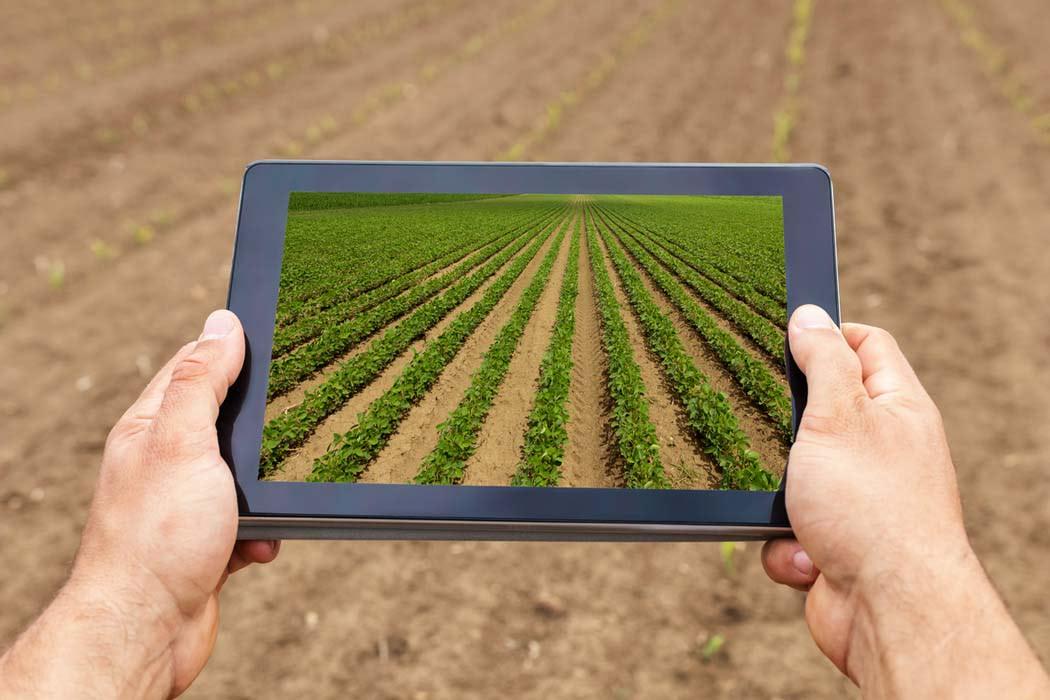 Visual of Farming in Silico