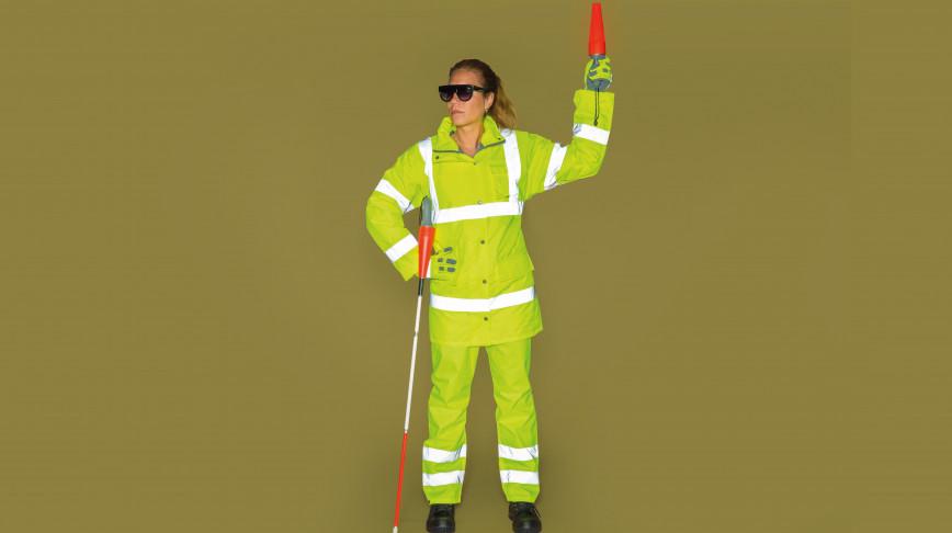 Visual of HUBOT: Meet the Blind Traffic Regulator