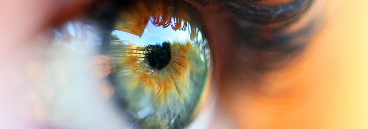 Visual of Looking into the Artificial Eye