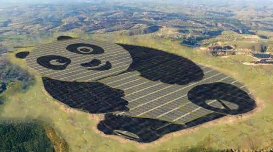 Visual of A Panda Shaped Solar Plant