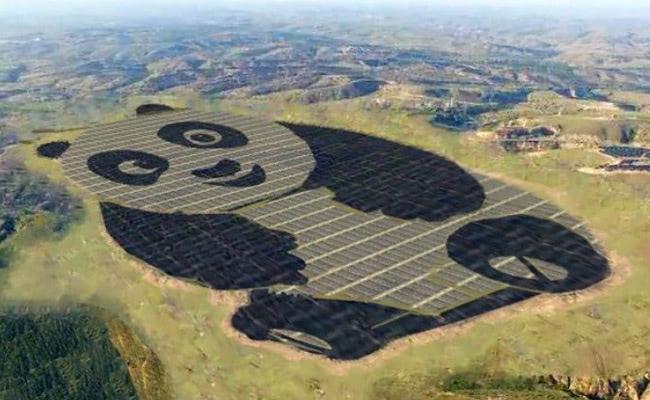 Visual of A Panda Shaped Solar Plant