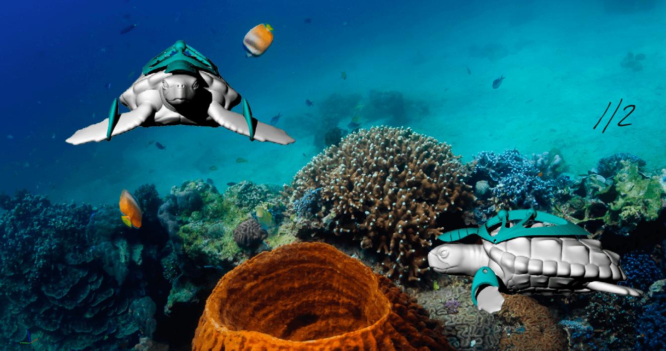 Visual of Plastic Exoskeletons for Turtles