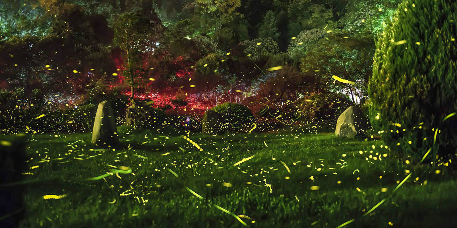 Visual of Replacing Fireflies with Lasers
