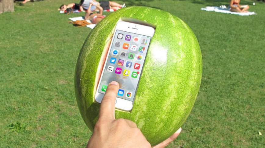 Visual of Protect Your Phone With a Watermelon