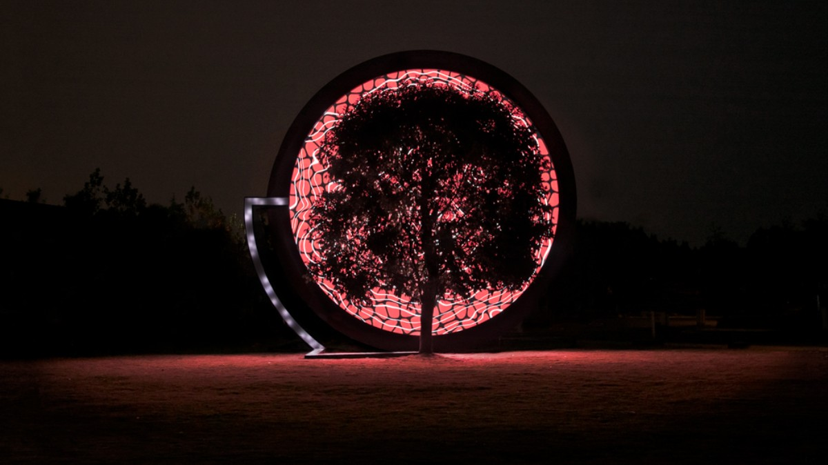Visual of This artwork lets trees tell the story of climate change