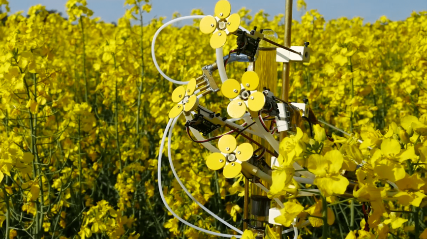 Visual of These robotic flowers are attracting bees