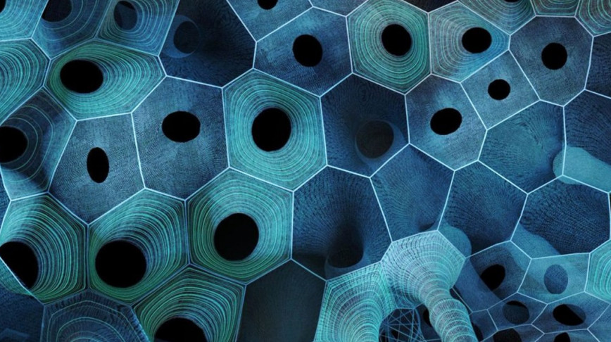 Visual of An introduction to Biomimicry