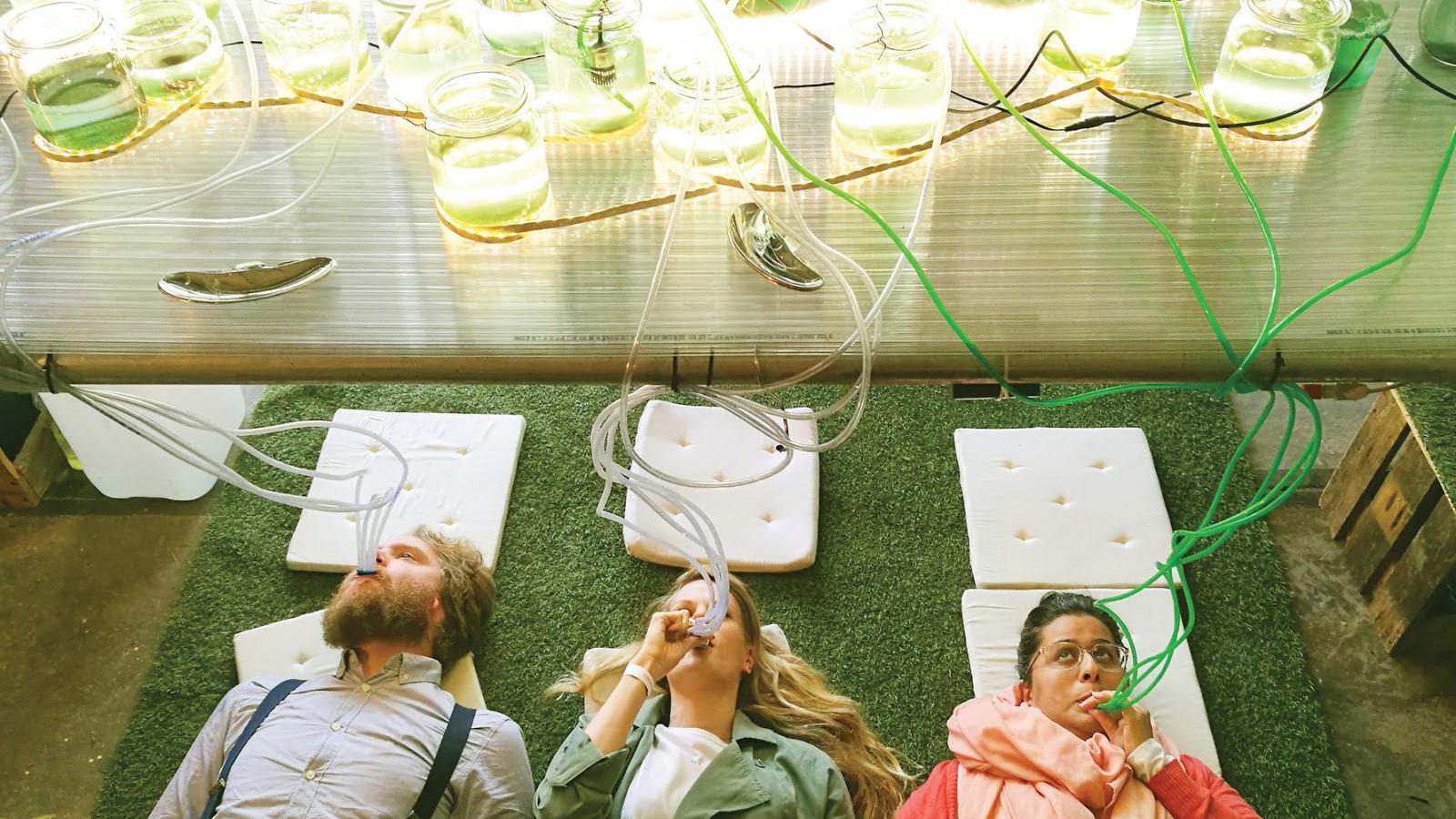 Visual of Five (un)mundane things to do at Dutch Design Week 2019