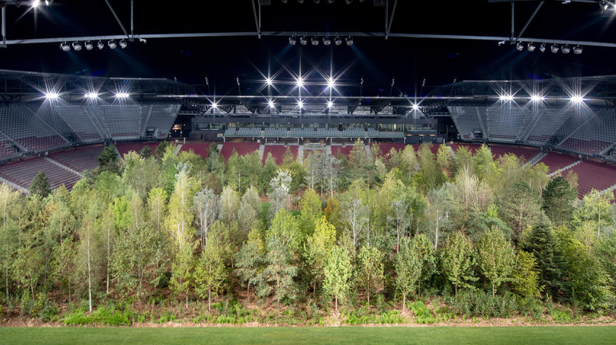 Visual of 299 trees grow in a football stadium