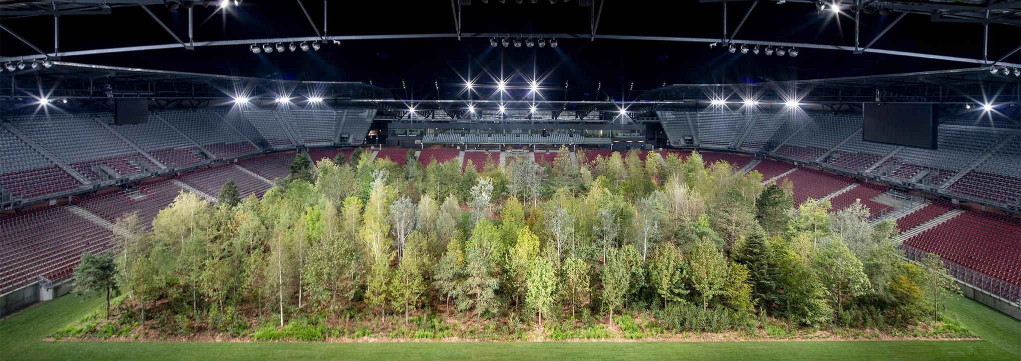 Visual of 299 trees grow in a football stadium