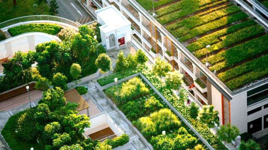 Visual of Green roofs improve the urban environment – so why don't all buildings have them?