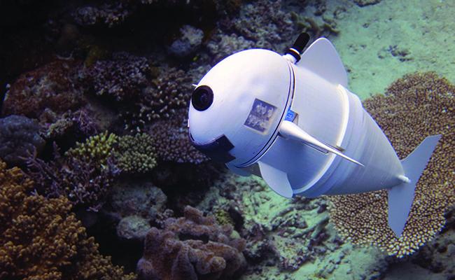 Visual of Watch this lifelike robot fish swim through the ocean