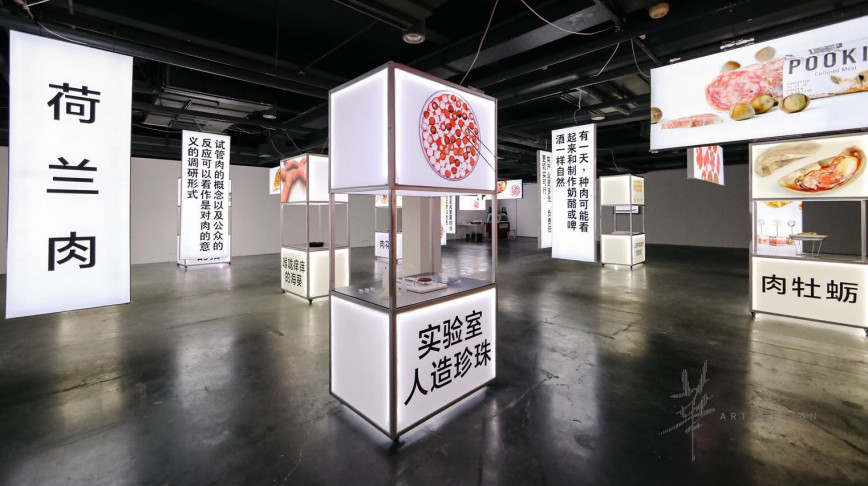 Visual of Next Nature XL showcase in China: in pictures