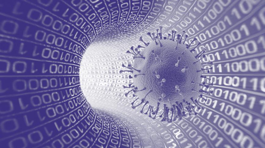 Visual of COVID-19 is a virus, corona is a meme