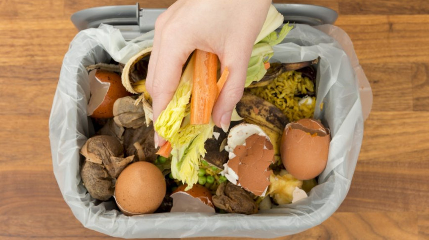 Visual of We could power households from the scraps in our food waste bins