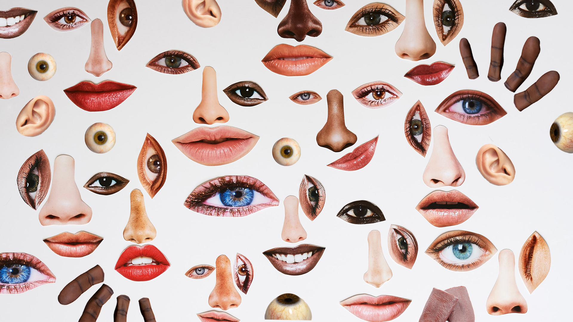 Visual of Next Senses